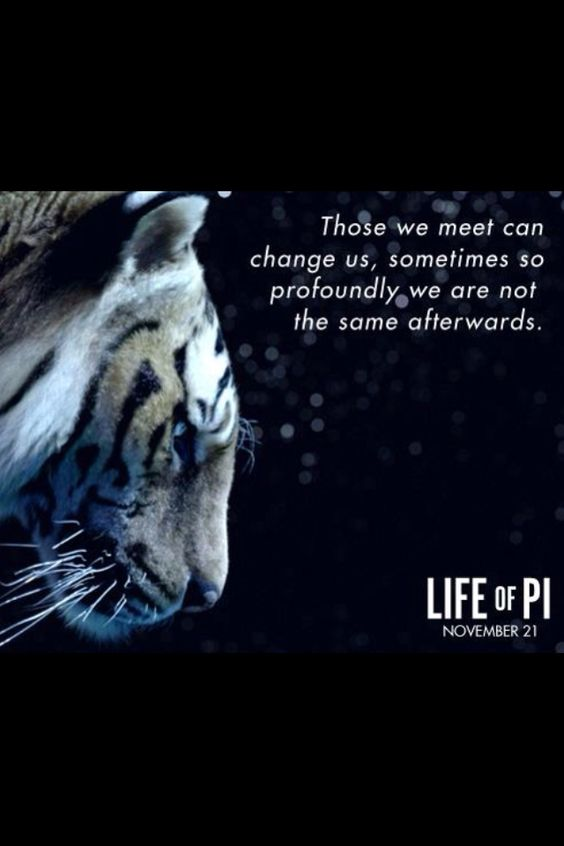 """Those we meet can change us sometimes so profoundly, we are not the same afterwards."" - Life of Pi"