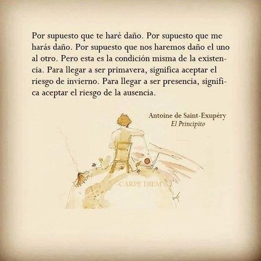 Taringa 28 Frases De El Principito El Mejor Libro Para Niños Grandes Book Quotes Life Words Spanish Quotes