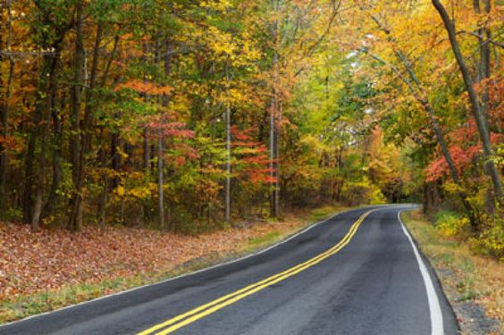 Best Bets: Drives and destinations that celebrate autumn hues