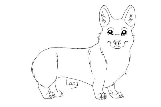 corgi coloring pages - corgis smoothie and chicken on pinterest