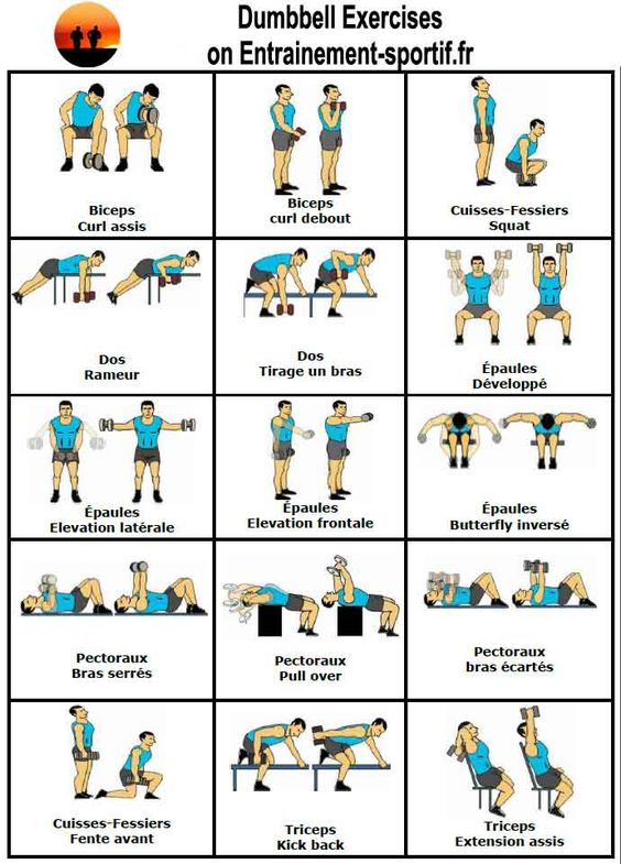 Hervorragend Musculation avec Haltères Exercices et Programme | Workout, Gym  PI14