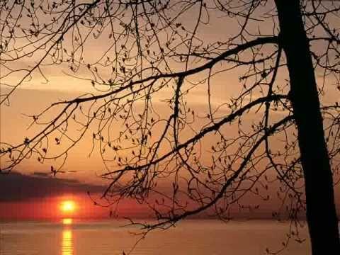 باسم الكربلائي دعاء الاحتجاب Youtube Sunrise Beach Sunrise Sunset Sunrise