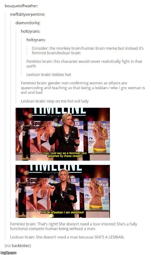 Feminist Vs Lesbian Brain Lesbian Humor Feminist Humor