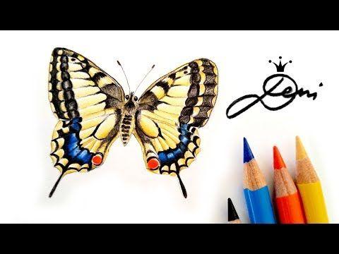 Schmetterling Zeichnen Schwalbenschwanz Malen How To Draw A Butterfly Kak Se Risuva Peperuda Y Schmetterling Zeichnen Schmetterling Malen Schmetterlingskunst