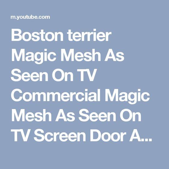 Boston terrier Magic Mesh As Seen On TV Commercial Magic Mesh As ...