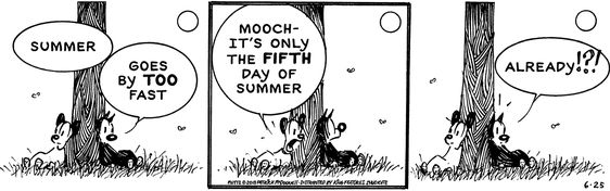 Mutts 5th day of Summer