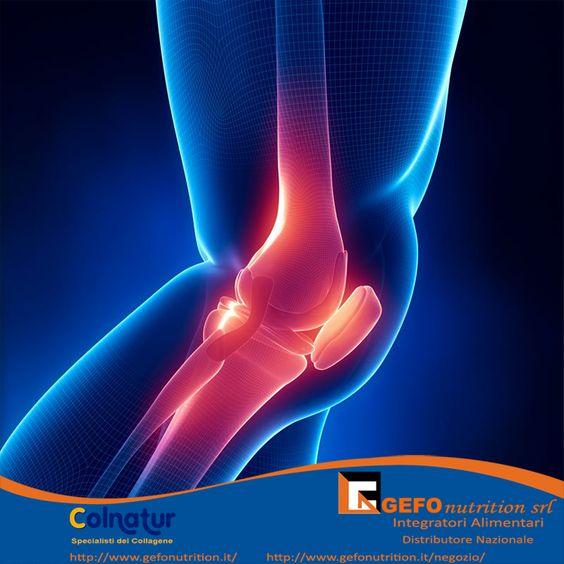 Rinforza le articolazioni e le ossa con il Colnatur® Classic arricchendole di flessibilità e resistenza. Miglioramenti? Te ne accorgerai da solo!