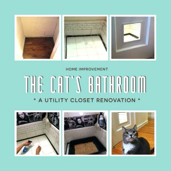 Yup.  I made a bathroom for my cat.  Click through to see the video on Instagram.  #MrsMeyersHunt #Submission #CatBathroom #diy @aliceinstalam  -Alice Lam