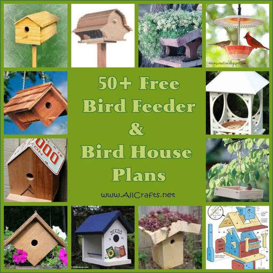 <p>Get out the saw, hammer and glue to work on a new project from our collection of 50+ Free Bird House and Bird Feeder Plans. I've spent countless hours watching the birds come to our feeders. You might also like:Flowering Bird Feeders Plans50 Free Birdhouse and Bird Feeder Plans50+ Free …</p>