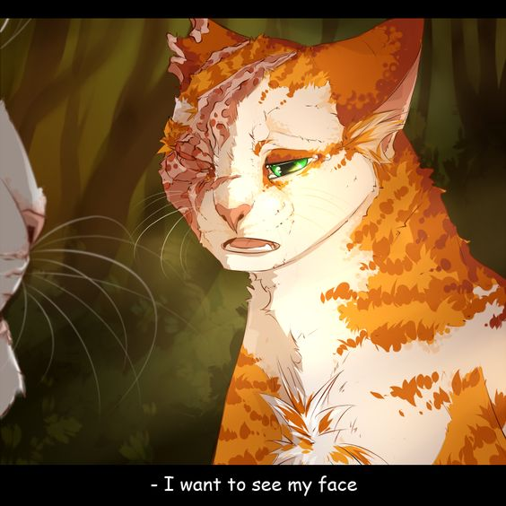 Warriors Erin Hunter Lost Stars: Lost Faith By KudesnikBob.deviantart.com On @DeviantArt