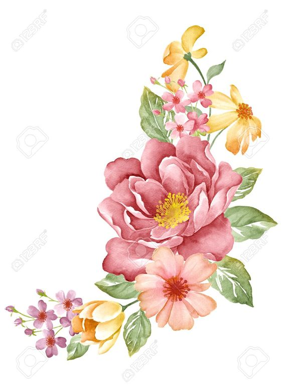 30859766-watercolor-illustration-flowers-in-simple-background--Stock-Illustration.jpg (941×1300):