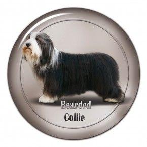 #beardedcollie 3D sticker