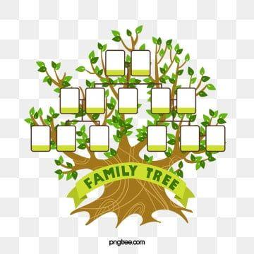 شجرة العائلة الشجرة الكبيرة عضو إطار الصورة Png وملف Psd للتحميل مجانا Family Tree Clipart Family Tree Logo Art Drawings For Kids