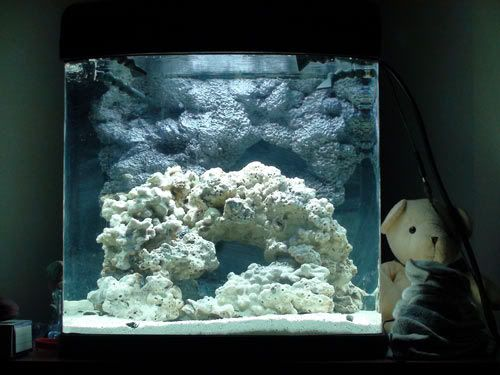 Looking for REEF SAFE Foam for aquarium - Reef Central Online Community