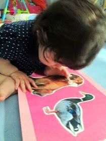 Sala dos bebés: Primeiras leituras