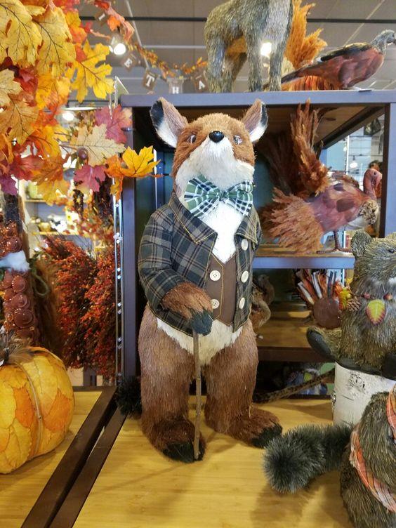 Mr. Fox at Pier 1