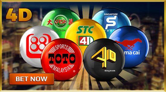 stc sports betting
