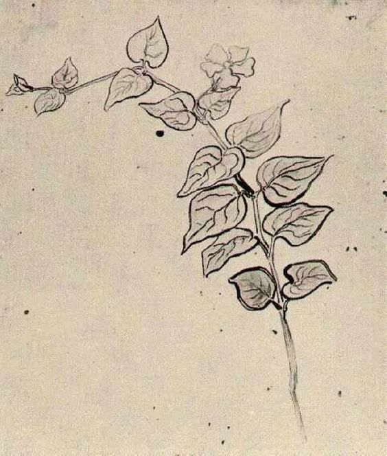 Branch with Leaves - Vincent van Gogh