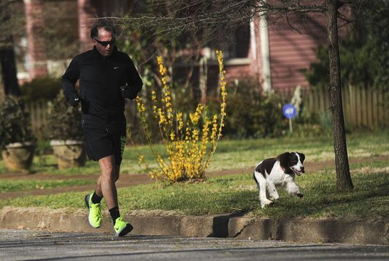jogger_dog_JN67.jpg - Decatur Daily: Uploaded Photos