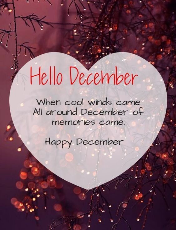 christmas greetings welcome quotes hello