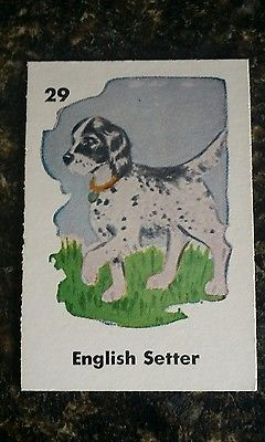 Vintage Collectible Playing Game Card English Setter Puppy