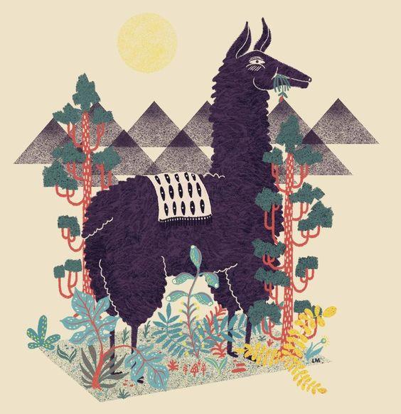 Lonely Llama by Llew  Mejia