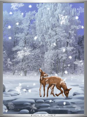 winter animated gif | Fiolex kostenlose Bildergalerie: Rehe im Schnee, animiert, 400x300px ...
