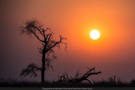 Another amazing sunset at Sabi Sabi!