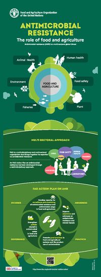 Antimicrobial Resistance. The Role of Food and Agriculture