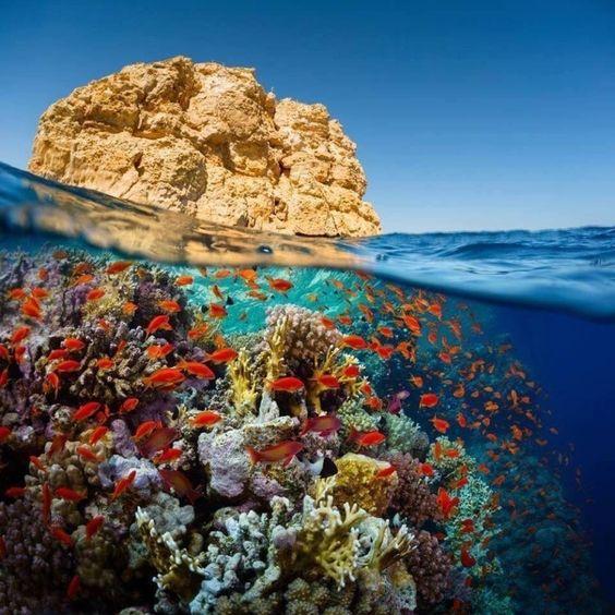На стыке двух миров, Красное море, Египет