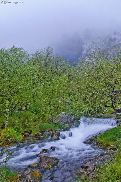 Cascade in the fog. Gándara, Cantabria, Spain.