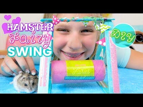 Amazing Hamster Race Maze 3 Hamsters Racing In Hamsters Cage Tubes