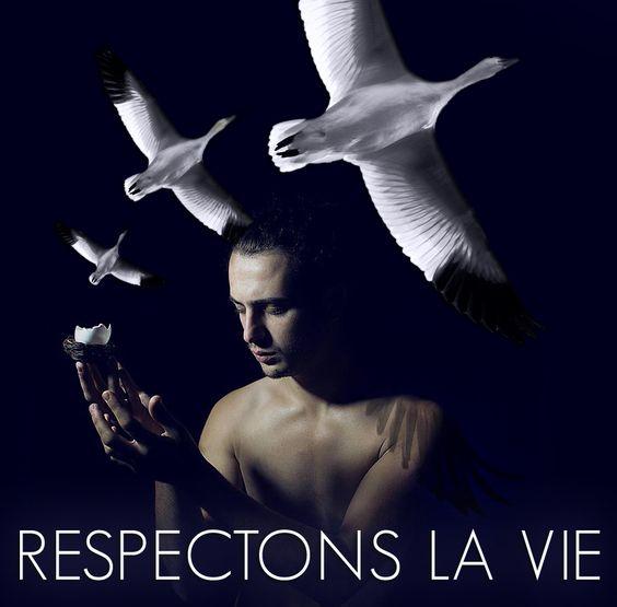PROTECTEURS DE VIE(S)