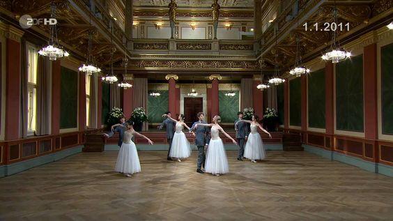 An der schönen blauen Donau - Neujahrskonzert / New Year's Concert 2011 ...