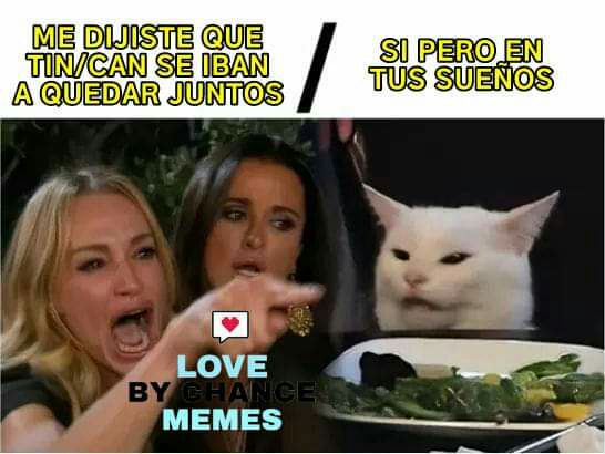 Love By Chance Memes Funny Spanish Memes Memes Cat Memes