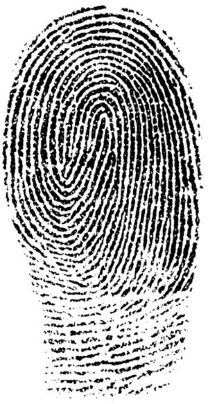 Latent-Print-Examiner.png (300×583) | Crime Theme VC1 | Pinterest