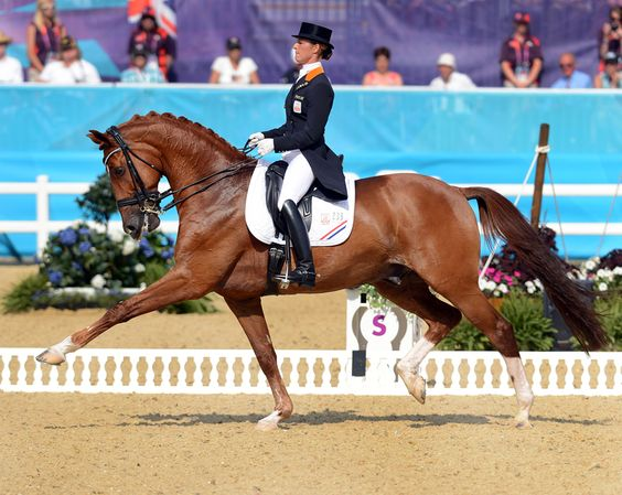 Wow! Adelinde Cornelissen and Parzival, silver medalist - that extension!!!!