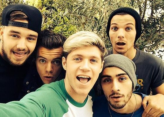 My Life Is Now Complete <3 <3 There is a god !! 5/5 Selfie OMG #OneDirection #Selfie