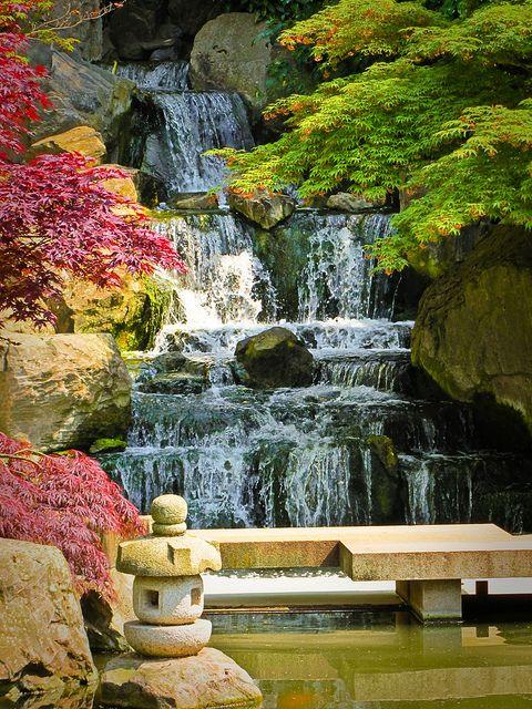 Kyoto Garden in London's Holland Park.