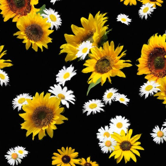 Sunflowers And Daisies Fitted Skirt Sunflowers Daisies Sunflower Wallpaper Cute Backgrounds