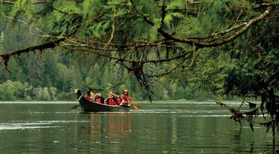 Canoe-Under-Cedar-Branch