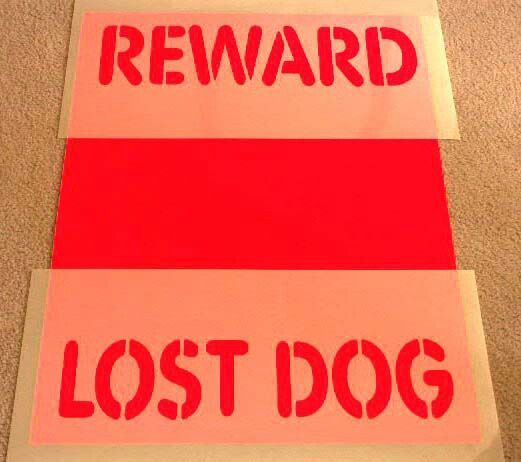8 best images about Lost Pet Recovery on Pinterest Neon, Lost - missing pet template