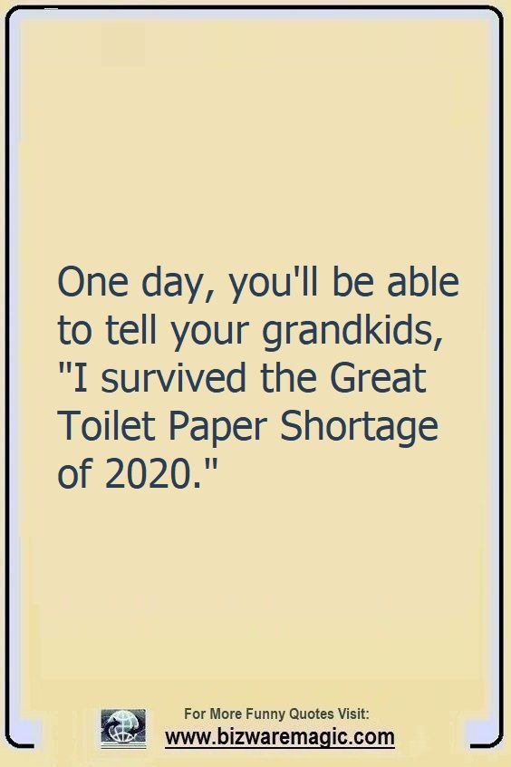"One day, you will be able to tell your grandkids, ""I survived the Great Toilet Paper Shortage of 2020.""  Click The Pin For More Funny Quotes. Share the Cheer - Please Re-Pin. #funny #funnyquotes #quotes #quotestoliveby #dailyquote #wittyquotes #oneliner #joke #puns #TheDragonflyChallenge"