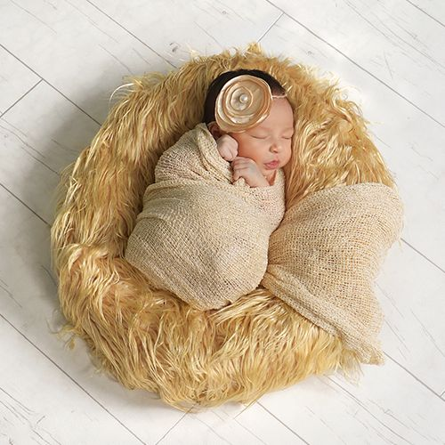 Baby and newborn photography from jcpenney portraits