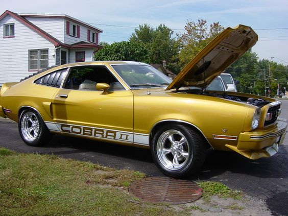 1976 ford mustang cobra ii cars i like pinterest the. Black Bedroom Furniture Sets. Home Design Ideas