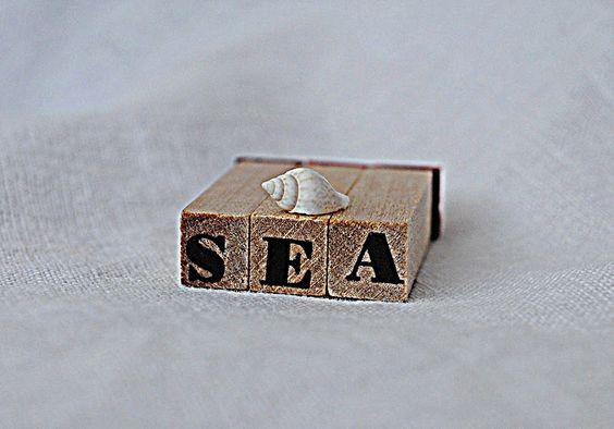 sea; a life at