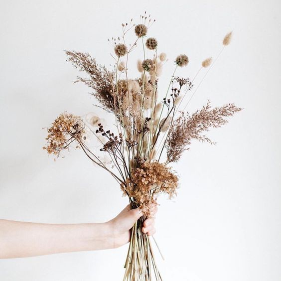 Summer Floral Inspiration Simple Modern Flower Aesthetic Dried Flower Arrangements Dried Flowers Dried Flower Bouquet