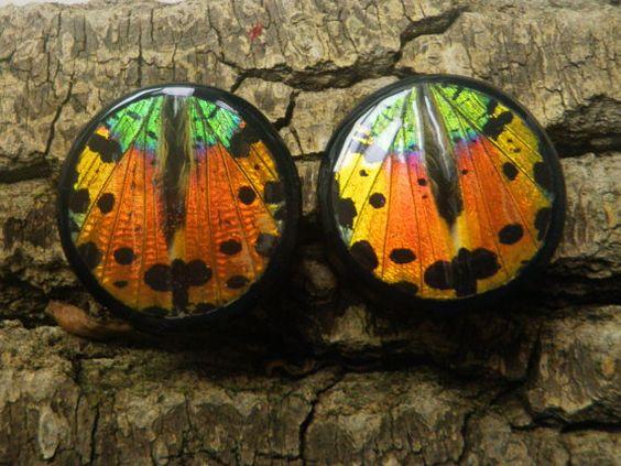 "1 1/2"" Sunset Moth Plugs Double Flare by AsanaNaturalArts on Etsy, $32.00"
