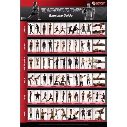 Amazon.com: Ripcords Exercise Guide Poster