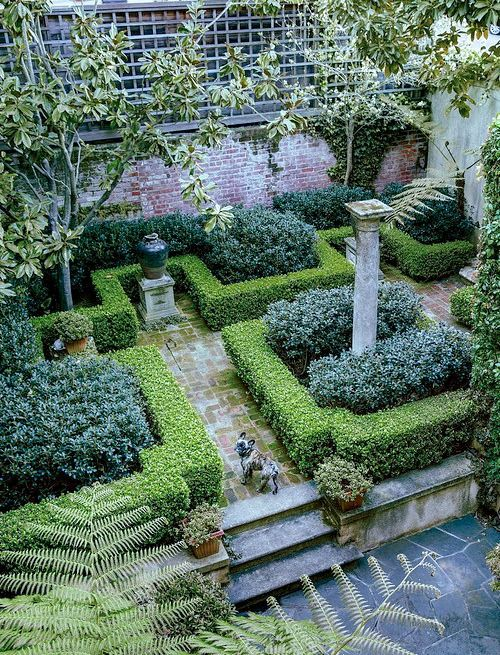 Fleaingfrance Compact Garden In Northern California Garden Pinterest Gardens